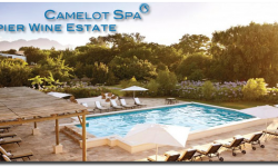 Camelot Spa Spier Wine Estate.png